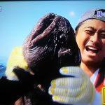 鉄腕ダッシュ!TOKIOが捕獲のオオカミウオが幻の魚は嘘?炎上寸前?【真相詳細】