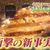 名医のTHE太鼓判!お肉ダイエットの効果やレシピは?1週間で7キロ痩せる?【2019年3月11日放送】